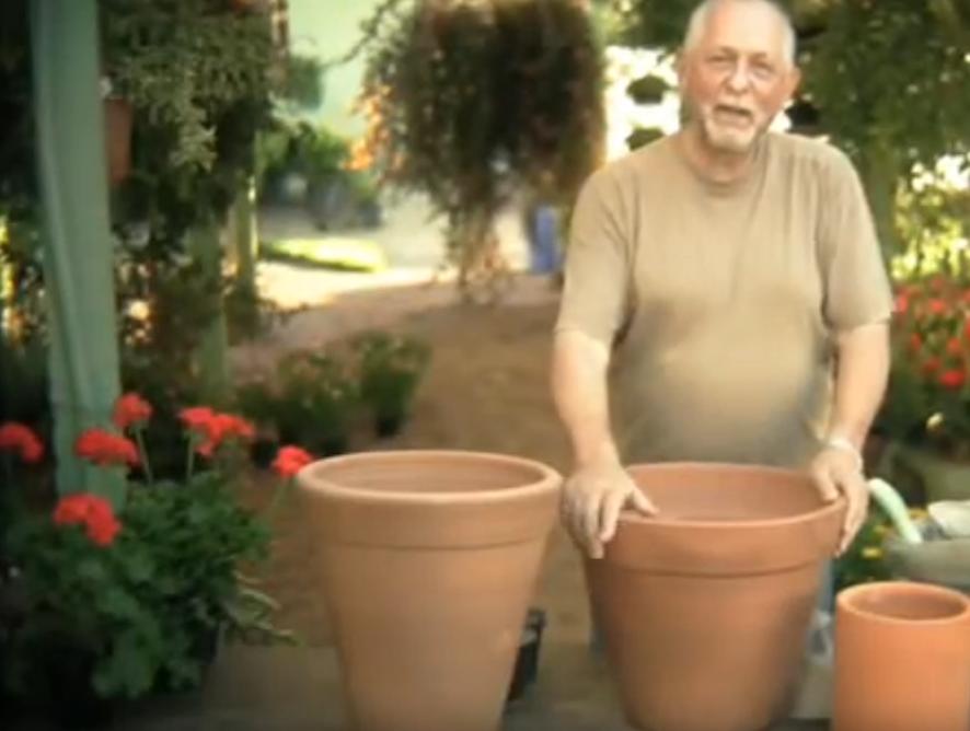 Como transformar um vaso de barro em um arranjo florido