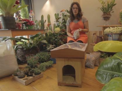 Telhado verde para casinha de cachorro