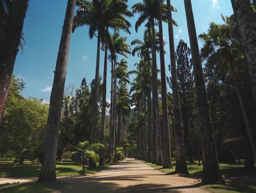 O que é um jardim botânico?
