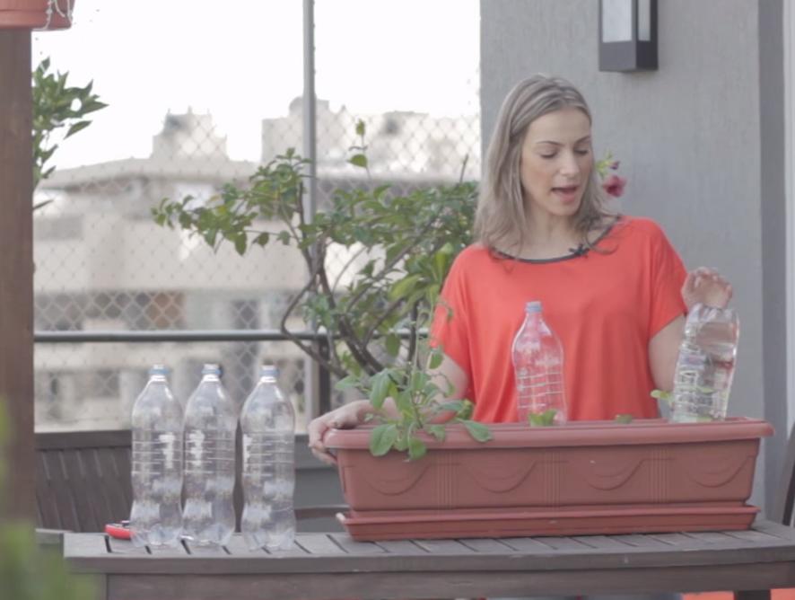 Garrafa pet na manutenção de hortas e plantas