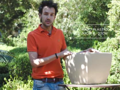 O vaso certo para diferentes plantas e ambientes