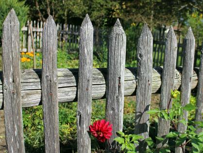 Como arrumar a cerca do seu jardim