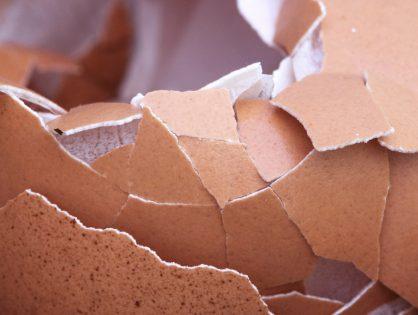 Como fazer farinha de cascas de ovos