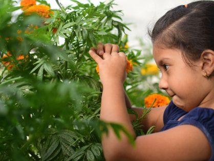 Crianças: a importância do contato com a natureza!