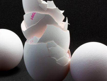 Como fazer farinha de casca de ovo