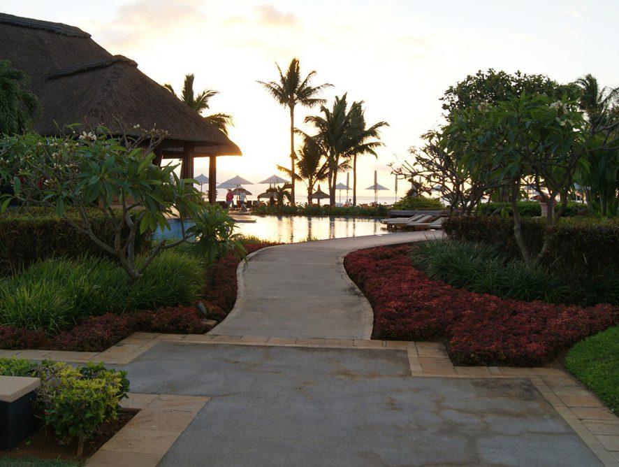 Plantas em casa de praia: o que escolher?