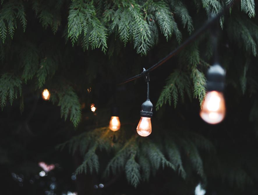 Confira dicas de decoração de jardim para o Ano Novo