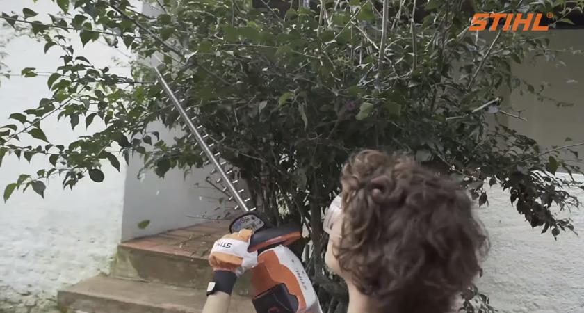 Podador STIHL - É hora de fazer o jardim