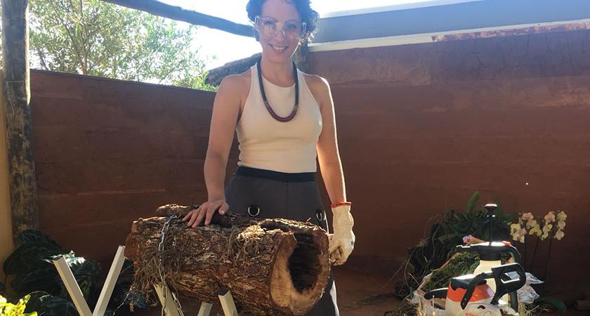 Arranjo de mesa no tronco: aprenda a fazer