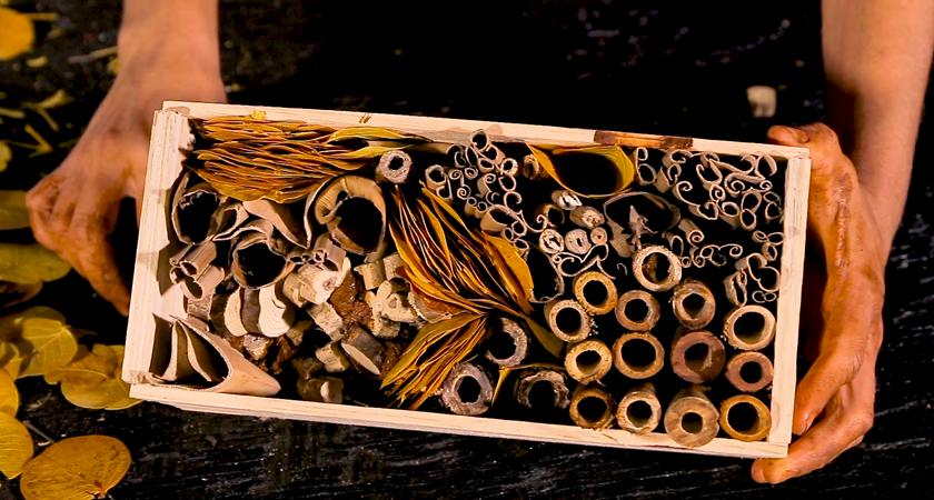 Como fazer uma casinha de insetos benéficos?