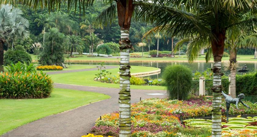 Jardim Botânico Plantarum: 5 coisas que você precisa saber