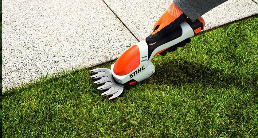 Cuidados práticos com seu jardim na primavera