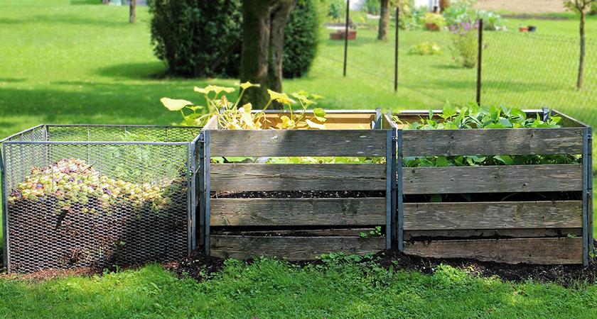Da cozinha para o jardim: os segredos da compostagem