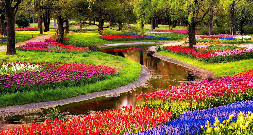 Jardins nota 10 que você precisa conhecer no mundo