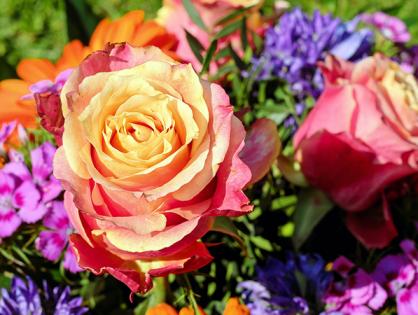 Dicas para seu arranjo de flores durar mais