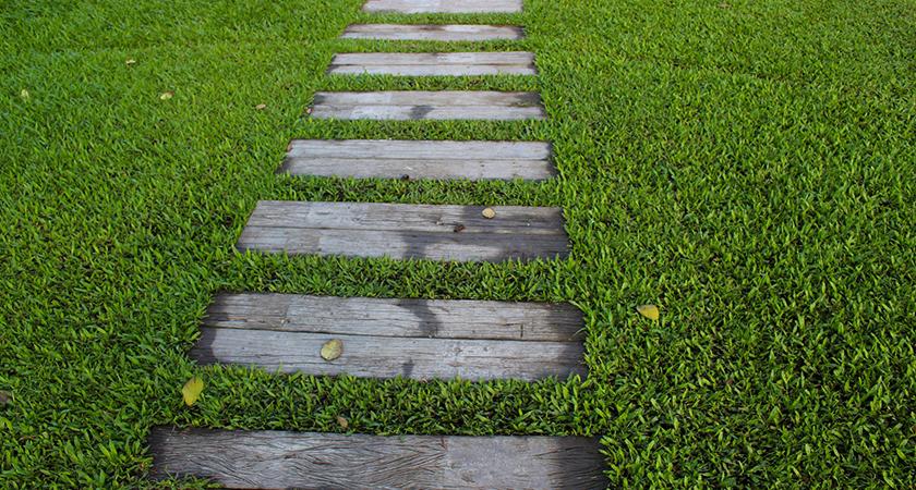 Charme sem fim: conheça os segredos dos caminhos de madeira