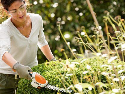 Como podar arbustos com mais praticidade