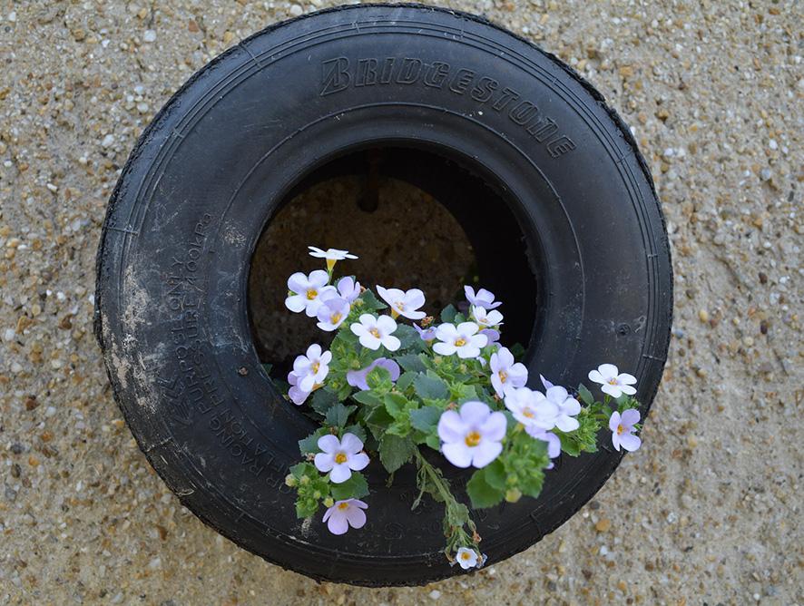 Como fazer jardim com pneus