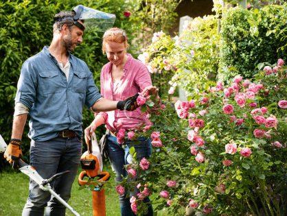 5 dicas para manter o seu jardim sempre lindo!