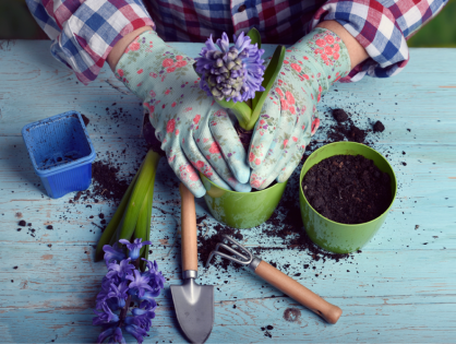 6 dicas que vão ajudar jardineiros iniciantes