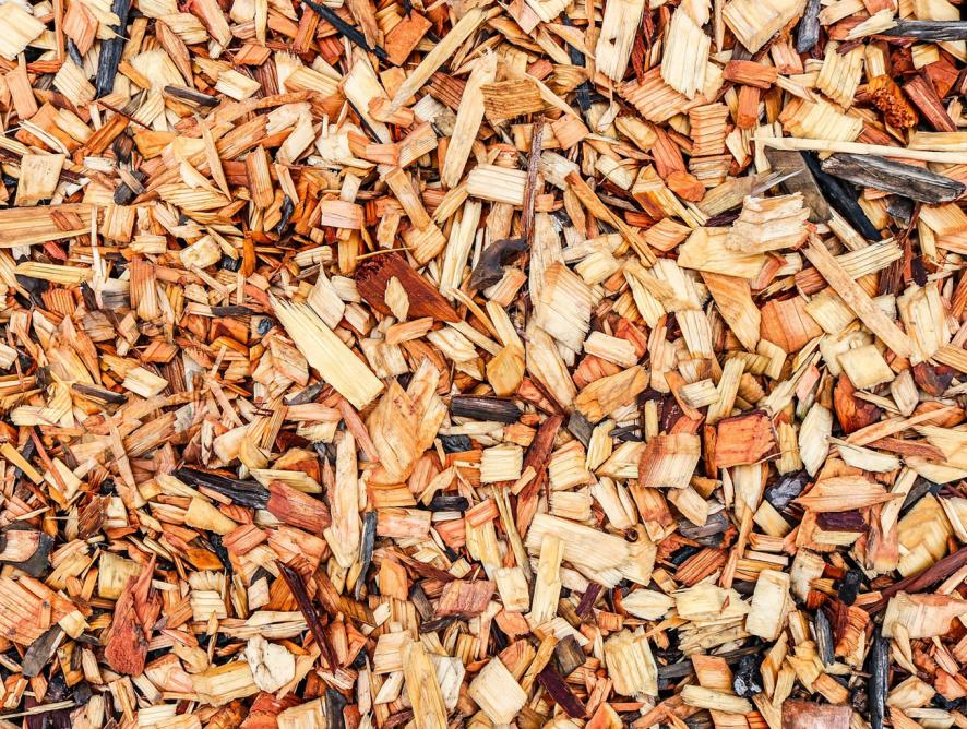 Mulching: benefícios e como fazer