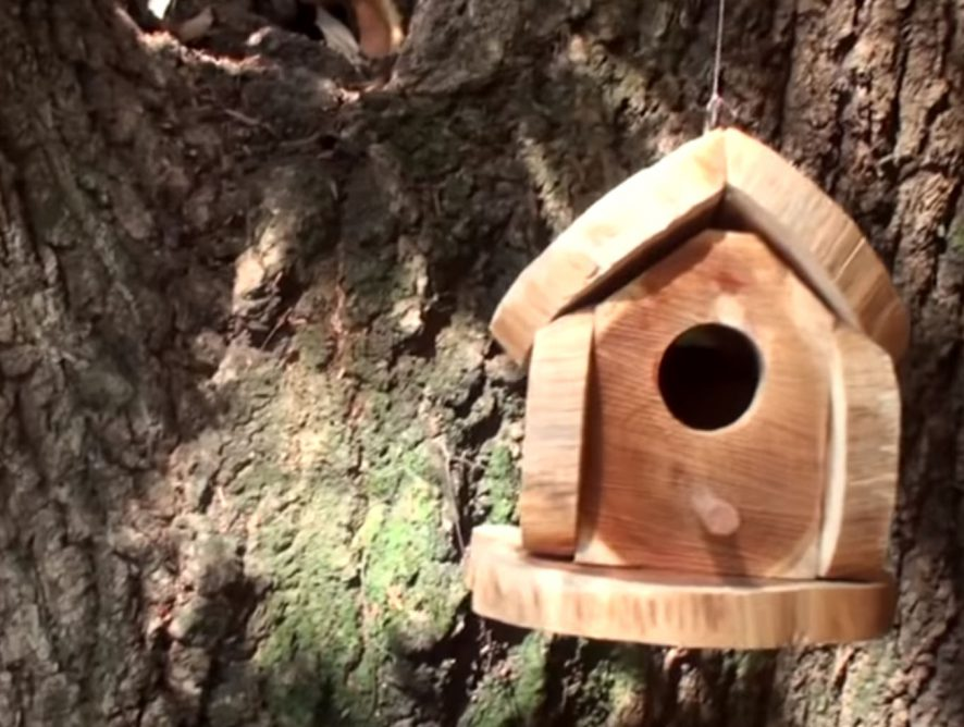 Aprenda como fazer uma casinha para pássaros