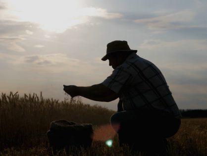 Dia do Agricultor: uma homenagem