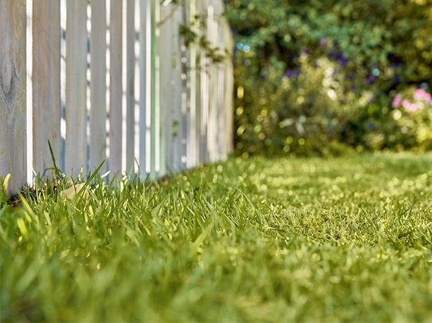Manutenção de gramados: cuidados com o corte