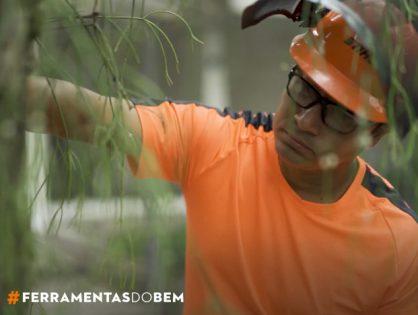 Por que podar uma árvore, com Sydney Brasil